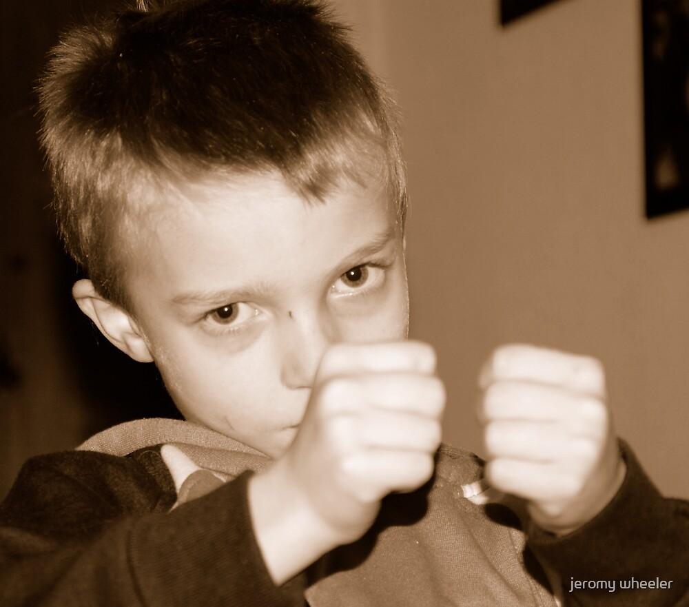 ready to fight by jeromy wheeler