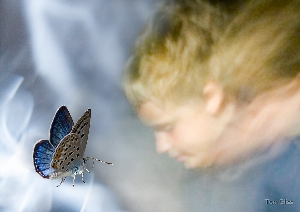 Boy and butterfly by Tom Gliss