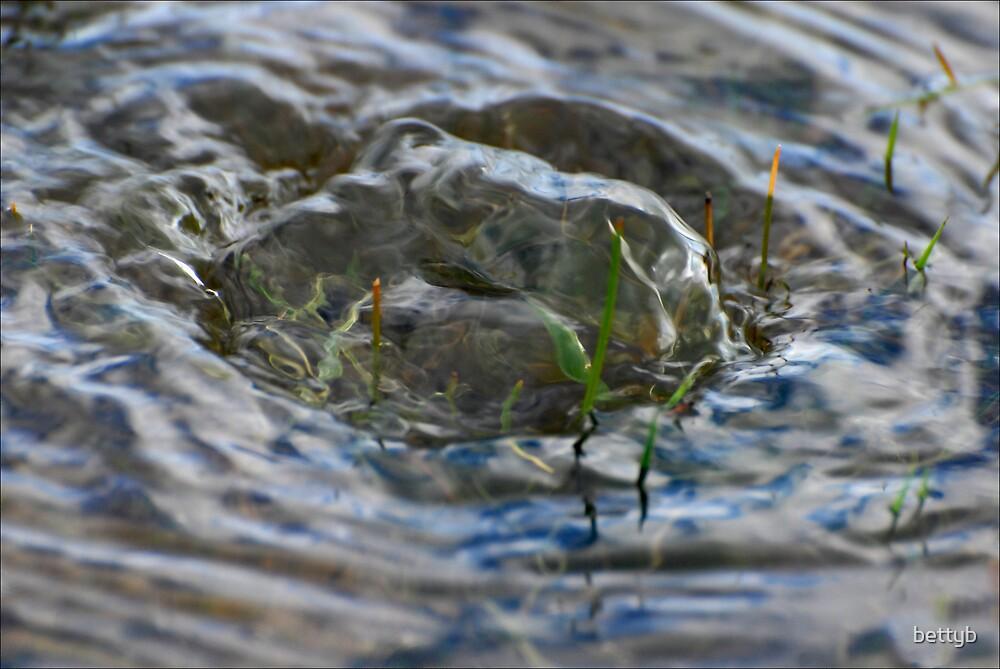 Water Swirl by bettyb