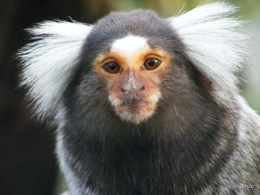 Nevrotic little monkey by robyenzo