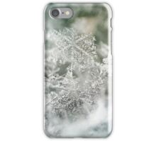 Seasons Greetings iPhone Case/Skin