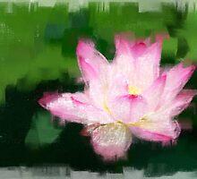 Pink Lotus by psyme