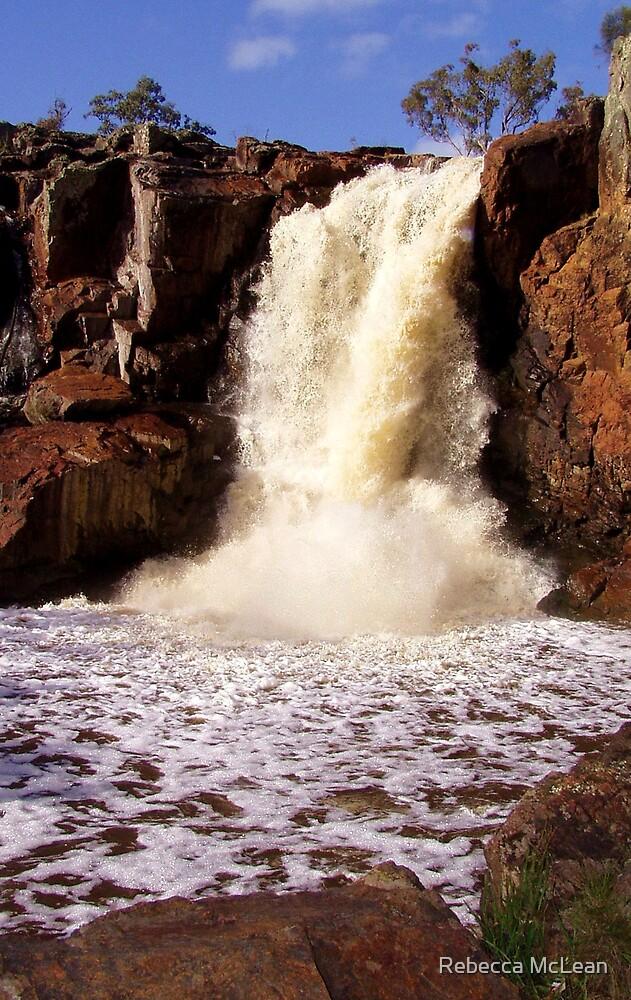 nigretta falls by Rebecca McLean