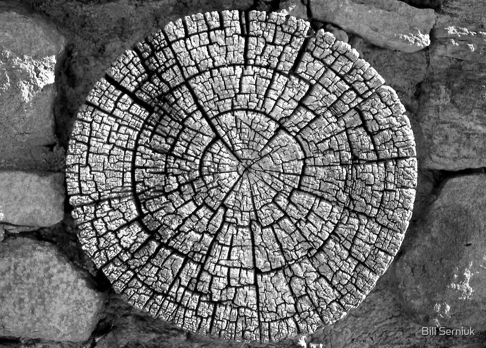 Anasazi Craftsmanship by Bill Serniuk