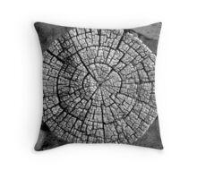 Anasazi Craftsmanship Throw Pillow