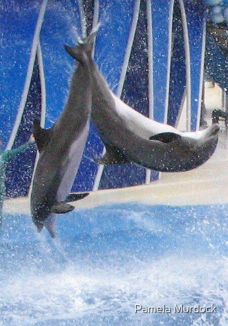 Dolphins by Pamela Murdock