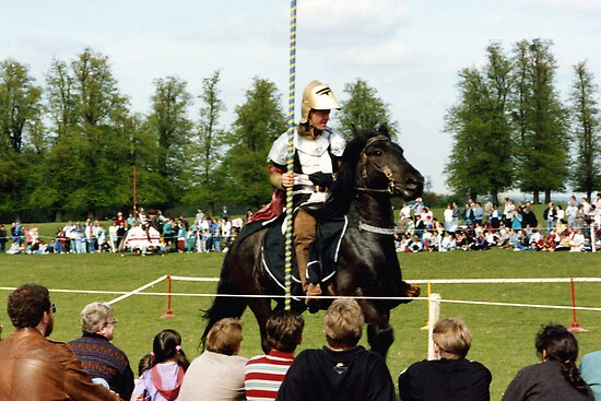 Knight in Shiny Armour by georgiegirl