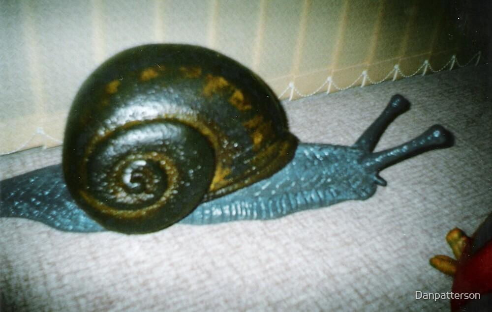 Snail by Danpatterson