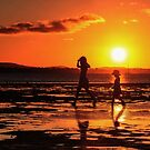 Summer Dazzle - Wellington Point Qld Australia by Beth  Wode