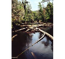Styx River Photographic Print