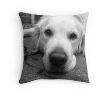 Bailey Throw Pillow