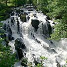Swallow Falls (2) by Gordon Hewstone