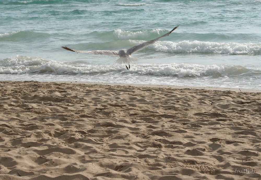 sea bird2 by fruitfish