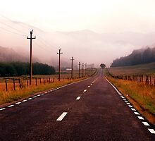 Road to Nowhere by Catalin Soare