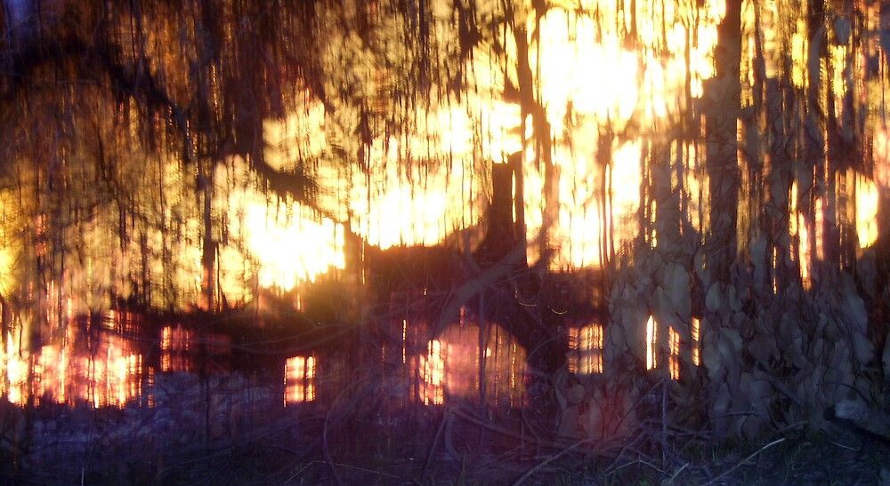 Burning House by jellybean28