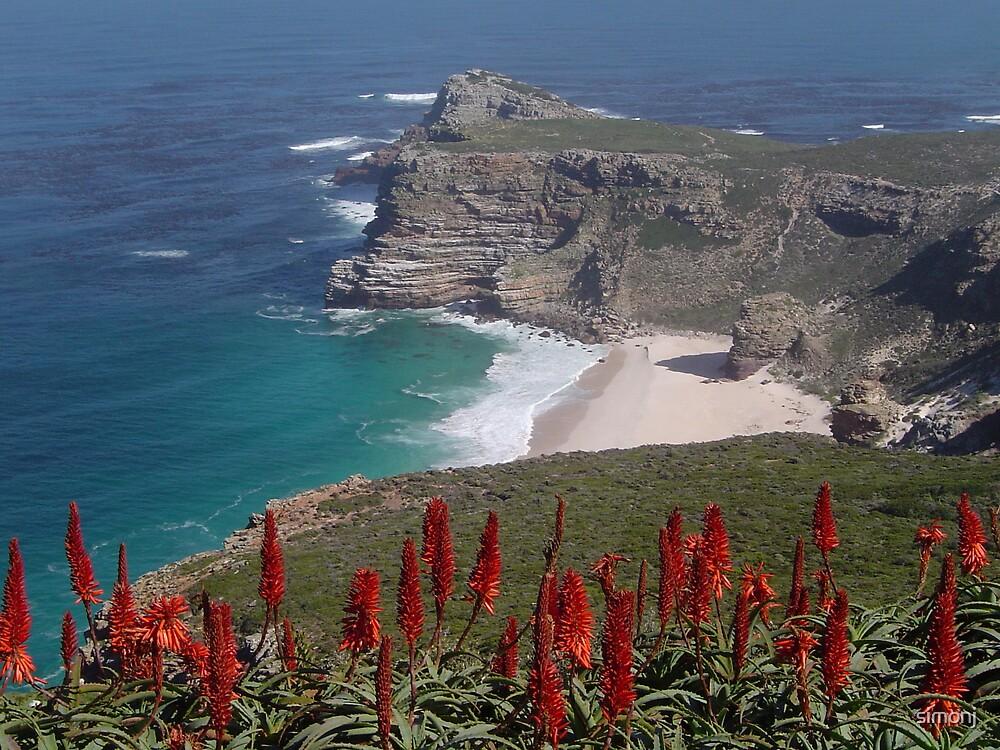 Cape Point by simonj