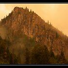 Mist over Carpathians by Adela Hriscu