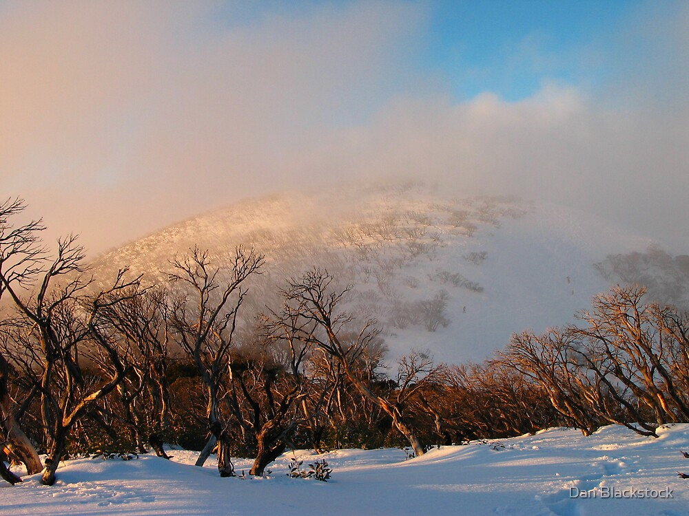 Feathertop backcountry by Dan Blackstock