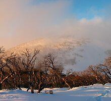 Feathertop backcountry by Dan Blackstock