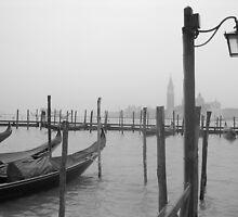 Mist by Sarah Putnam