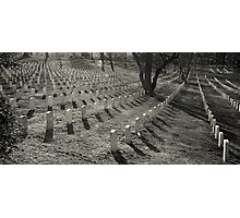 Arlington Cemetery Photographic Print