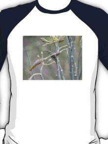 Monarch Butterfly Caterpillar on Milkweed T-Shirt
