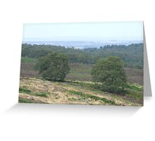 more of  Cannock Chase Greeting Card