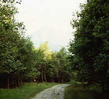 The Path to Rob Roy's Hideout by georgiegirl