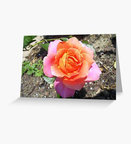 In my Garden Greeting Card
