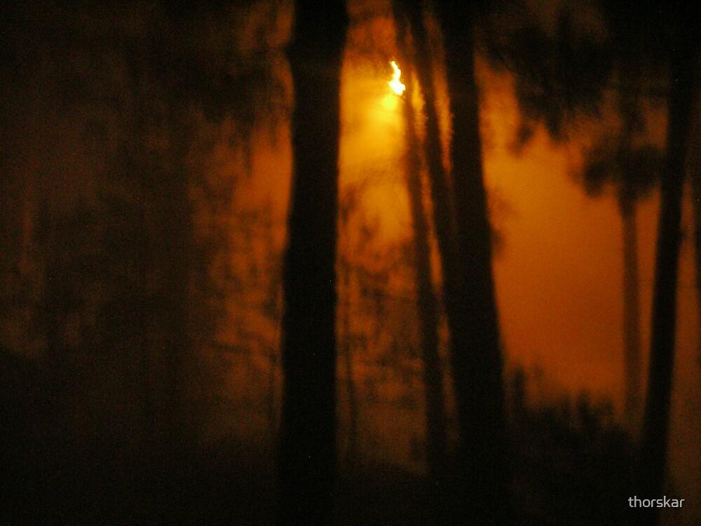 Fog Sets In by thorskar
