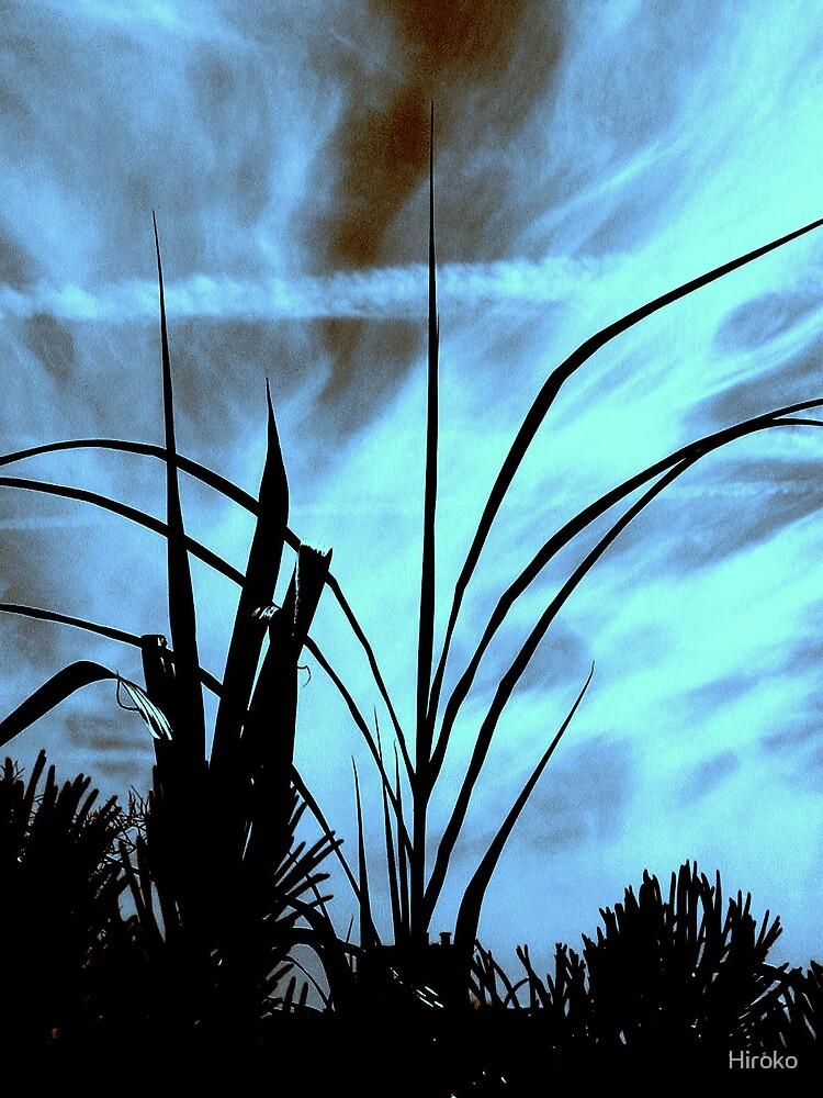 Sky at Dusk by Hiroko