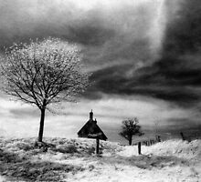 Lonely Cottage by Bruce Halliburton