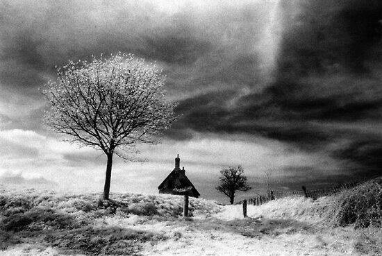 Lonely Cottage by Bruce Halliburton