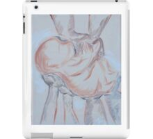 Presentation iPad Case/Skin