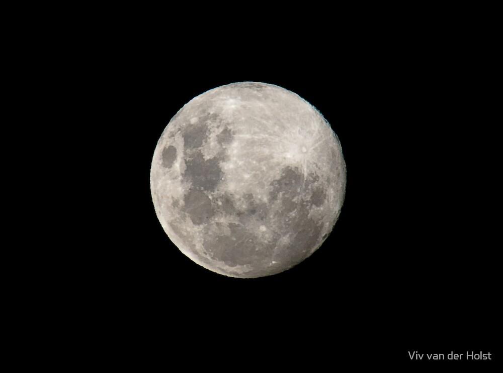 Moon by Viv van der Holst