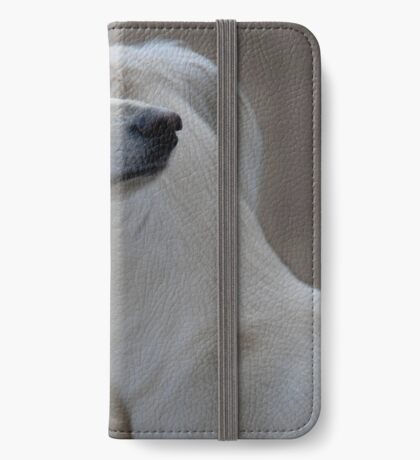 Two heads of a Saluki iPhone Wallet