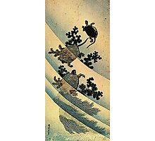 'Turtles' by Katsushika Hokusai (Reproduction). Photographic Print