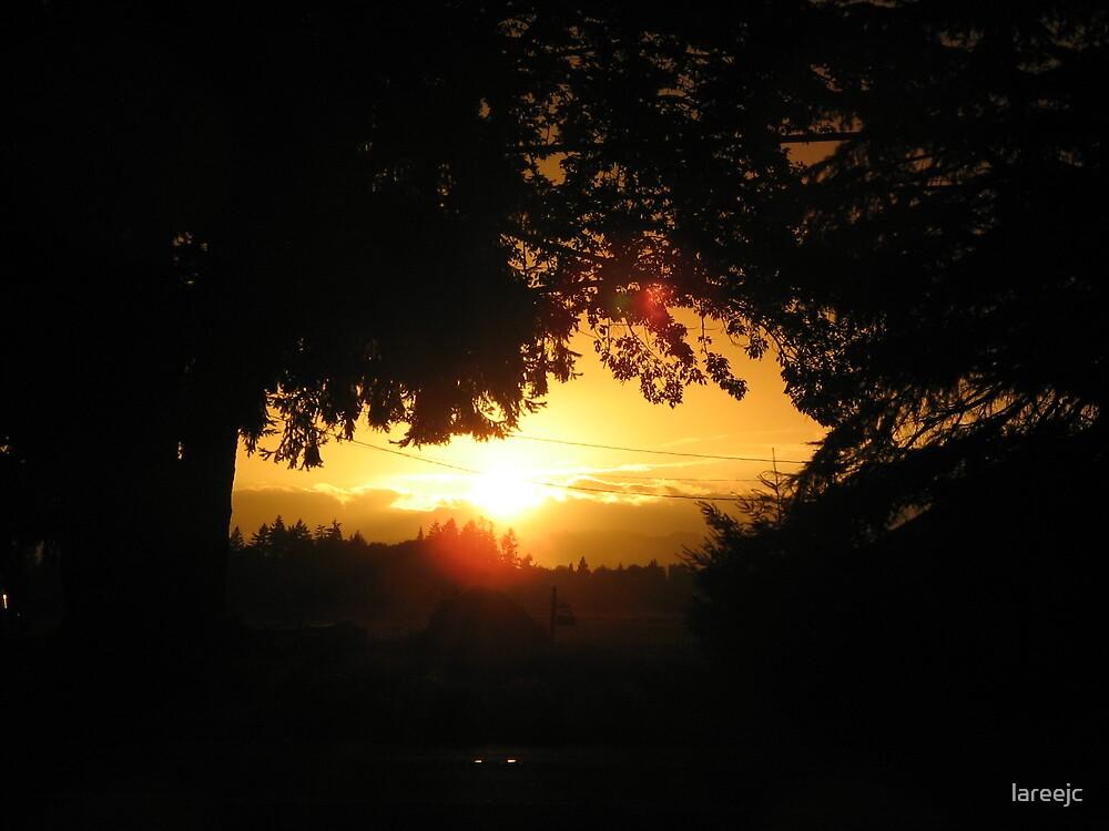 HARVEST SUNSET (1) by lareejc
