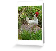 White Hen, Early Fall Greeting Card