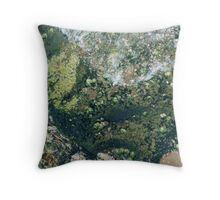Rockpools 8 Throw Pillow
