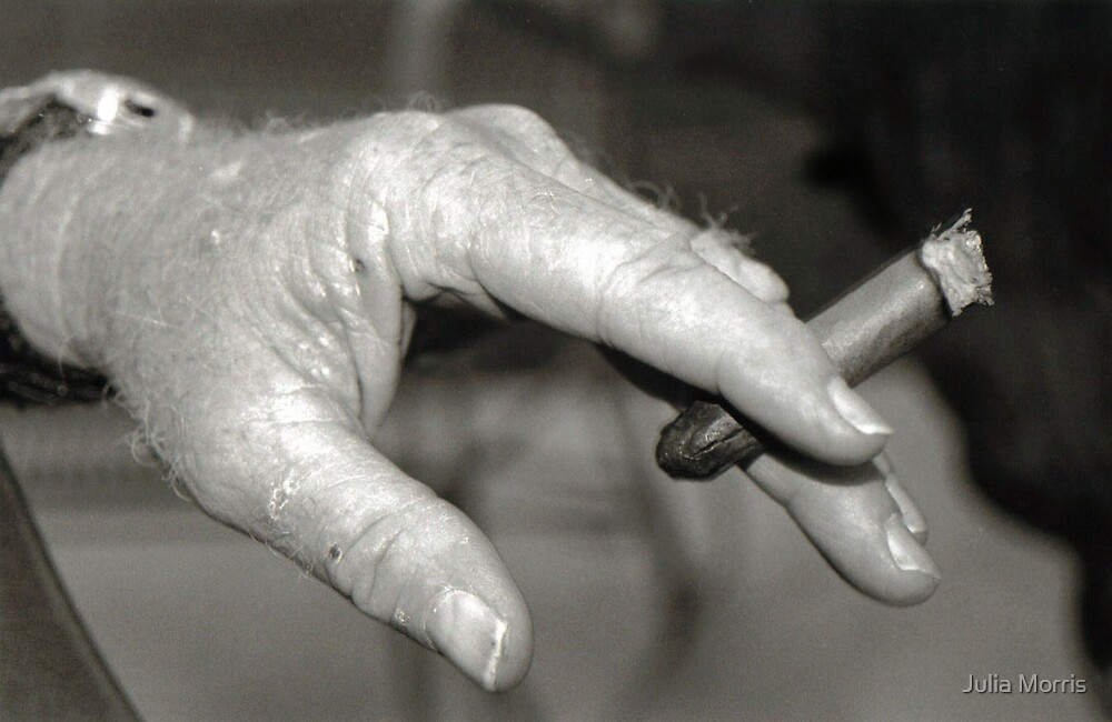 Grandpa's Hand by Julia Morris