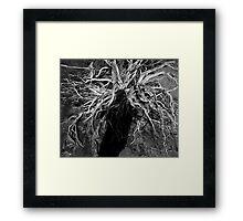 Desert Medusa Framed Print
