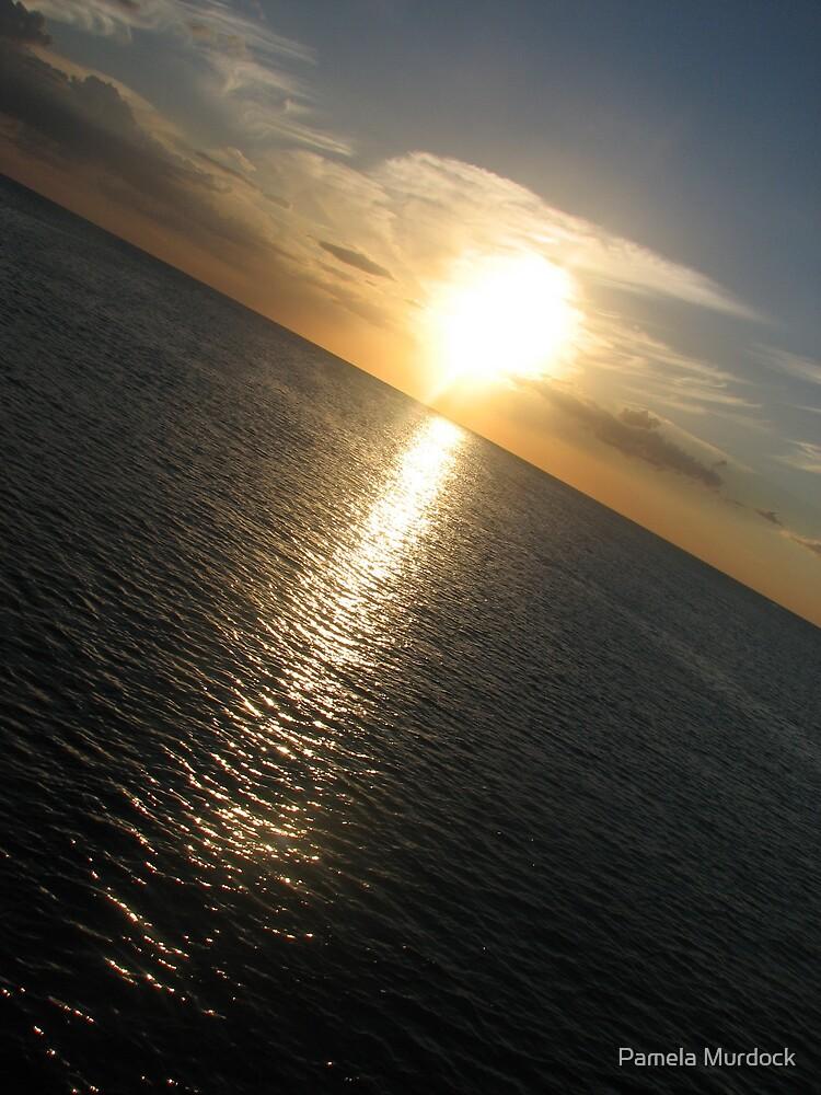 Florida Sunset by Pamela Murdock