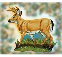 Craft Foam Deer Photographic Print