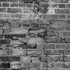 Brick Wall by eleganceinimagery