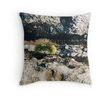 Rockpools 12 Throw Pillow