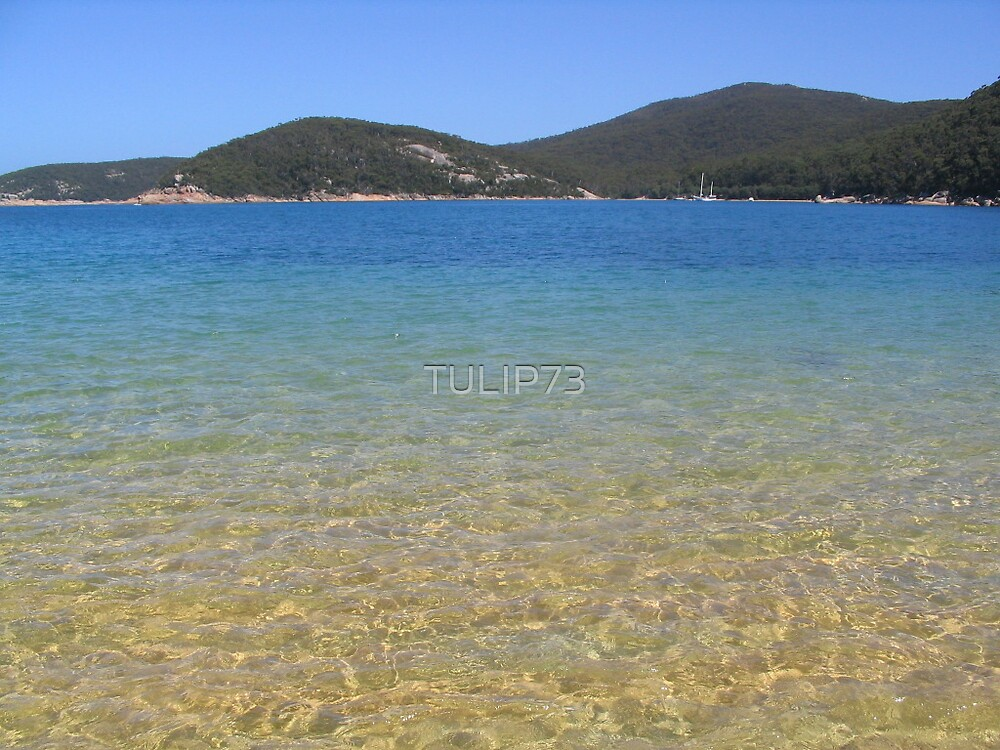 WIlsons Prom by TULIP73