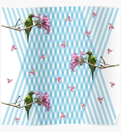 Parakeet and flowers Poster