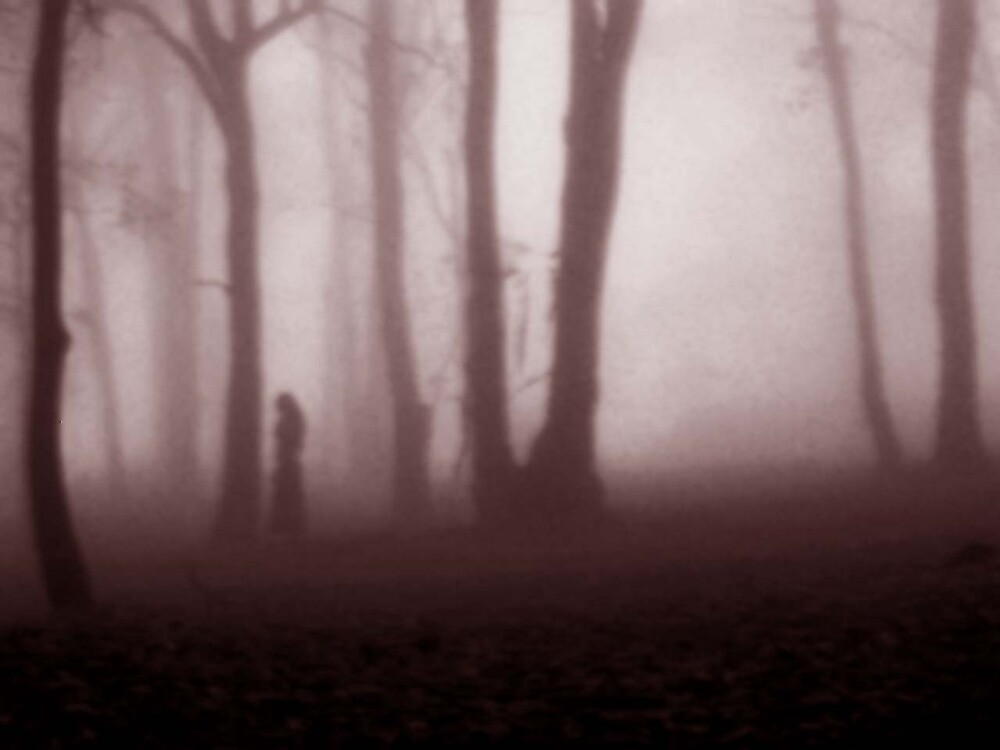 stroll in the fog by cocoa86