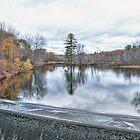 Splendid Reservoir by Richard Bean
